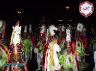Carnaval 2008, 4º lugar no Grupo 1, Enredo Brasil, Folia de Norte a Sul